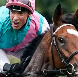 ENABLE SET TO TAKE ON SIX O'BRIEN RIVALS IN ASCOT KING GEORGE