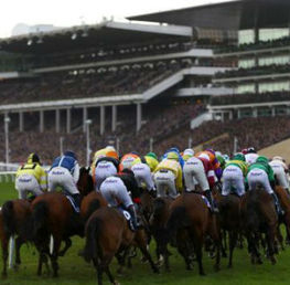 The Beginners Guide To The Cheltenham Festival