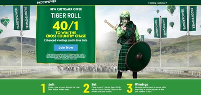 Paddy_Power_Tiger_Roll_Cheltenham_Festival_Betting_Offer.jpg