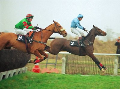 carvill's_hill_goldcup92.jpg