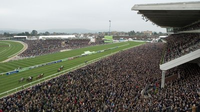 cheltenham_november_meeting.jpeg