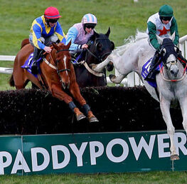 Tiger Roll, Defi Du Seuil and Paddy Power Gold Cup Set To Light Up Cheltenham November Meeting