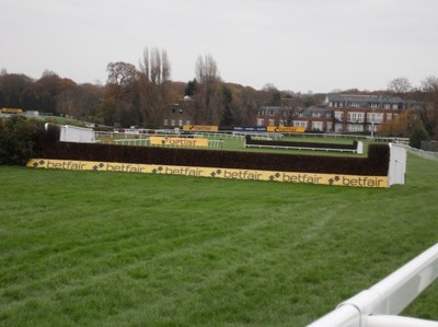 sandown_tinglecreek.jpg