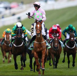 The Path To Cheltenham! A Preview of The National Hunt Season 2019-2020