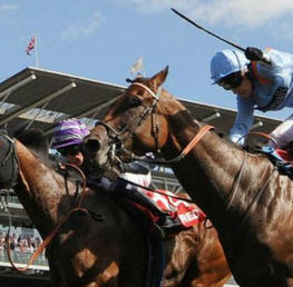 Best Bets For The Yorkshire Ebor Festival