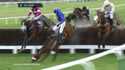 Cue Card meets disaster at the third last in the 2016 Cheltenham Gold Cup, whilst challenging eventual winner Don Cossack (left)..jpg