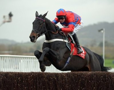 Sprinter Sacre is set for another all-conquering season.jpg