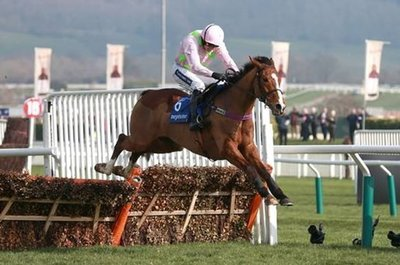 Faugheen is back on track to try and regain his hurdling crown..jpg