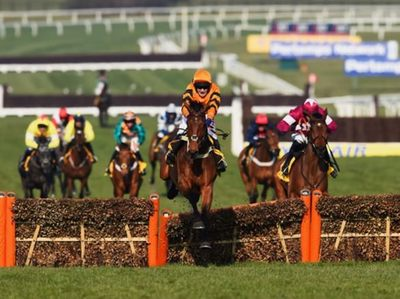 Thistlecrack's win at the World Hurdle at Cheltenham_.jpg