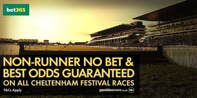Bet365 Non Runner No Bet & Best Odds Guaranteed on all Cheltenham Festival Races.jpg