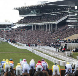 Cheltenham Festival 2019 Betting Guide