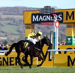 Best Each Way Ante-Post Bets And Betting Bonuses For Cheltenham Festival 2021