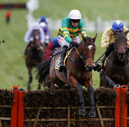 How to Win at the Cheltenham Festival